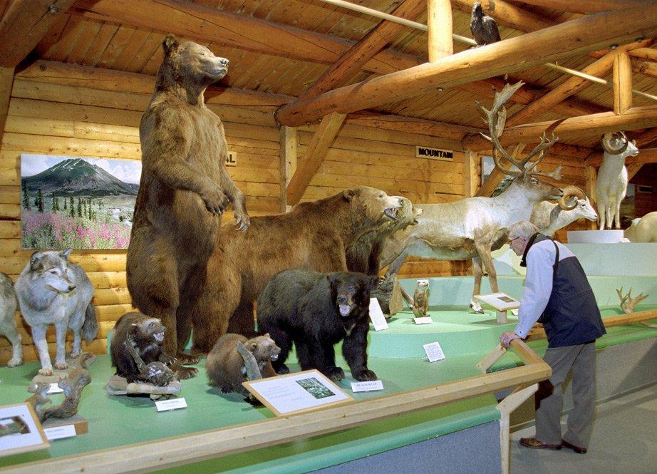 Macbride Museum Yukon Territory Alaska Northern British Columbia